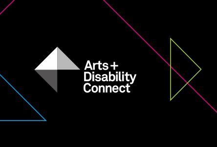 Arts Council and Arts & Disability Ireland announce recipients of the Arts and Disability Connect scheme 2017