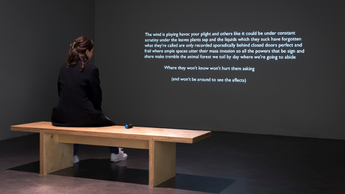 Suzanne Walsh, The Land Where Nothing is, 2016. Text-based video with audio, duration 12 minutes.