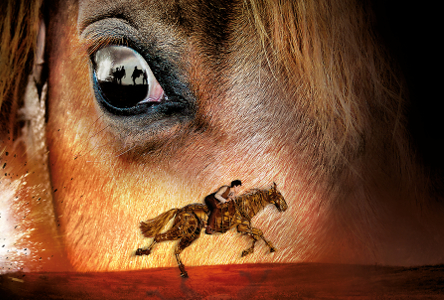 Theatre: War Horse at Bord Gáis Energy Theatre (Touch Tour, Audio Described and Captioned Performance)